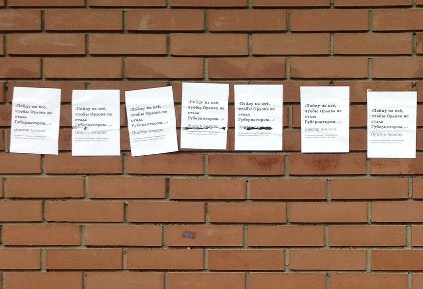 В Собинском районе появились листовки против врио губернатора Владимирской области Светланы Орловой за подписью главы района Виктора Аникина.