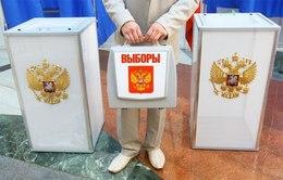 Очередной брифинг председателя Владимирского облизбиркома был посвящен процедурным моментам и поднятой журналистами теме явки.